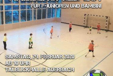 Hallenspielfest für F-Junioren und Bambini